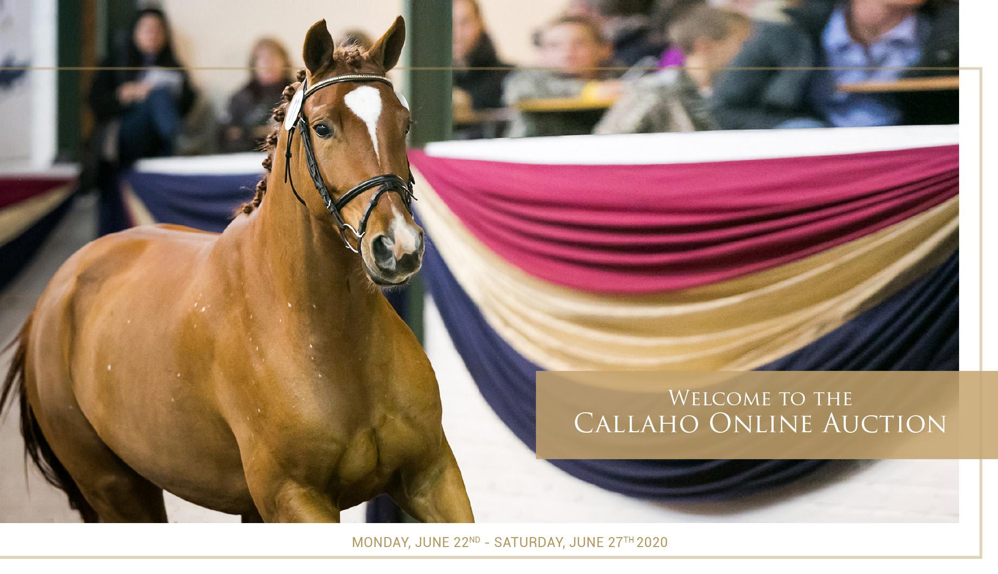 Callaho Auction